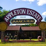 Amazing Facts About Jamaica Appleton Rum